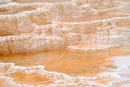 Yellowstone Trip - Summer 2014 (157)