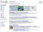 "Google Caffeine - search for ""Gulf of Mexico"" 9 June 2010"